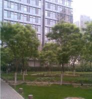 海格国际大厦