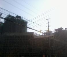 锦城·绿雅阁