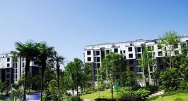 华粹南山绿庭