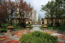 棕榈泉国际花园