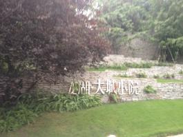 龙湖大城小院