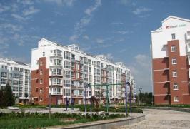 众成·新新家园
