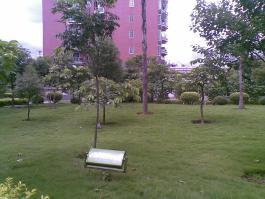 金山碧水紫竹苑