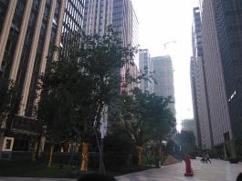泰禾城市广场