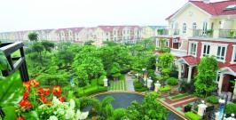 珠江国际城