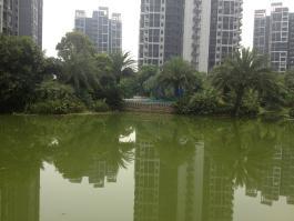 锦尚蓬莱苑