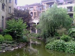 金龙国际花园