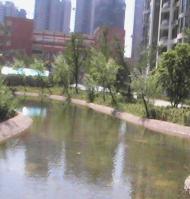世纪城龙禧苑