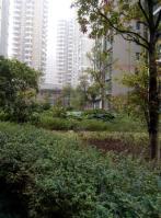 世纪城龙福苑
