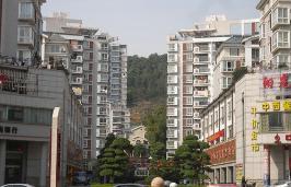 宏维·山水明城