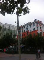 顺河新区位于北刘新区南方