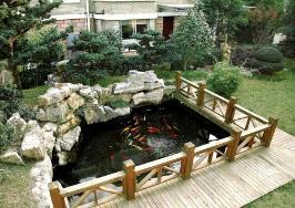 中天·世纪花园