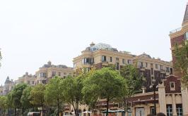 中体奥城国际