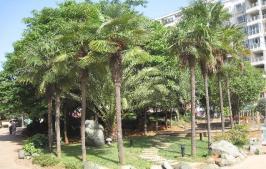 百大国际花园