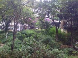 王旗营小区