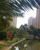 世纪城华春苑位于红星天铂东方