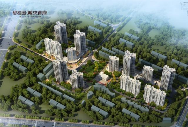 碧桂园·城央首府