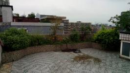 金色城市花园