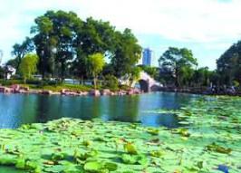 宁波月湖公园