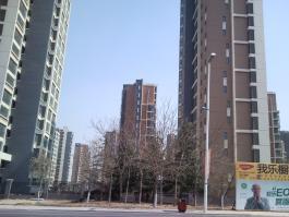 绿城·紫薇广场