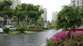 大唐国际公寓