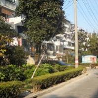 泗塘二村(中块)