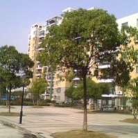 高行银杏苑