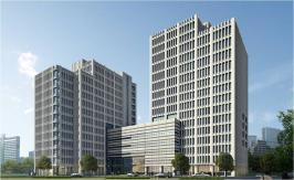 枫林国际大厦