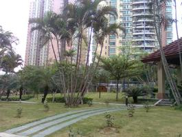 新安湖花园