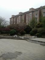 金之枫花园