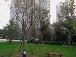 中海国际社区海悦花园四区