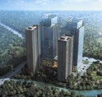 泰山国际金融中心
