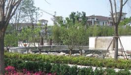 中信公园城