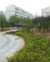 东方名苑位于中央生活城西北方