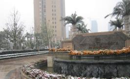 保利中央公馆