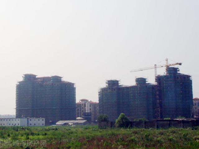 陆宇·中央郡