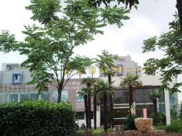 新加坡花园