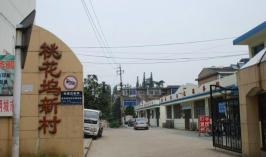 桃花坞新村
