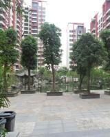 平湖秋月花园